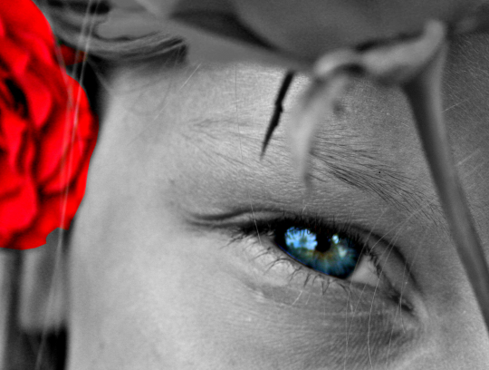 The War of Red and Blue (Selective Colour)