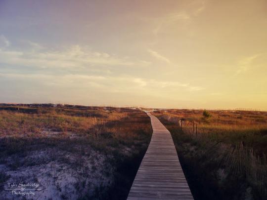 The Boardwalk II