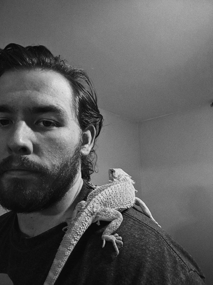Comparing Beards