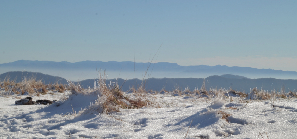 Snow on Top of Max Patch