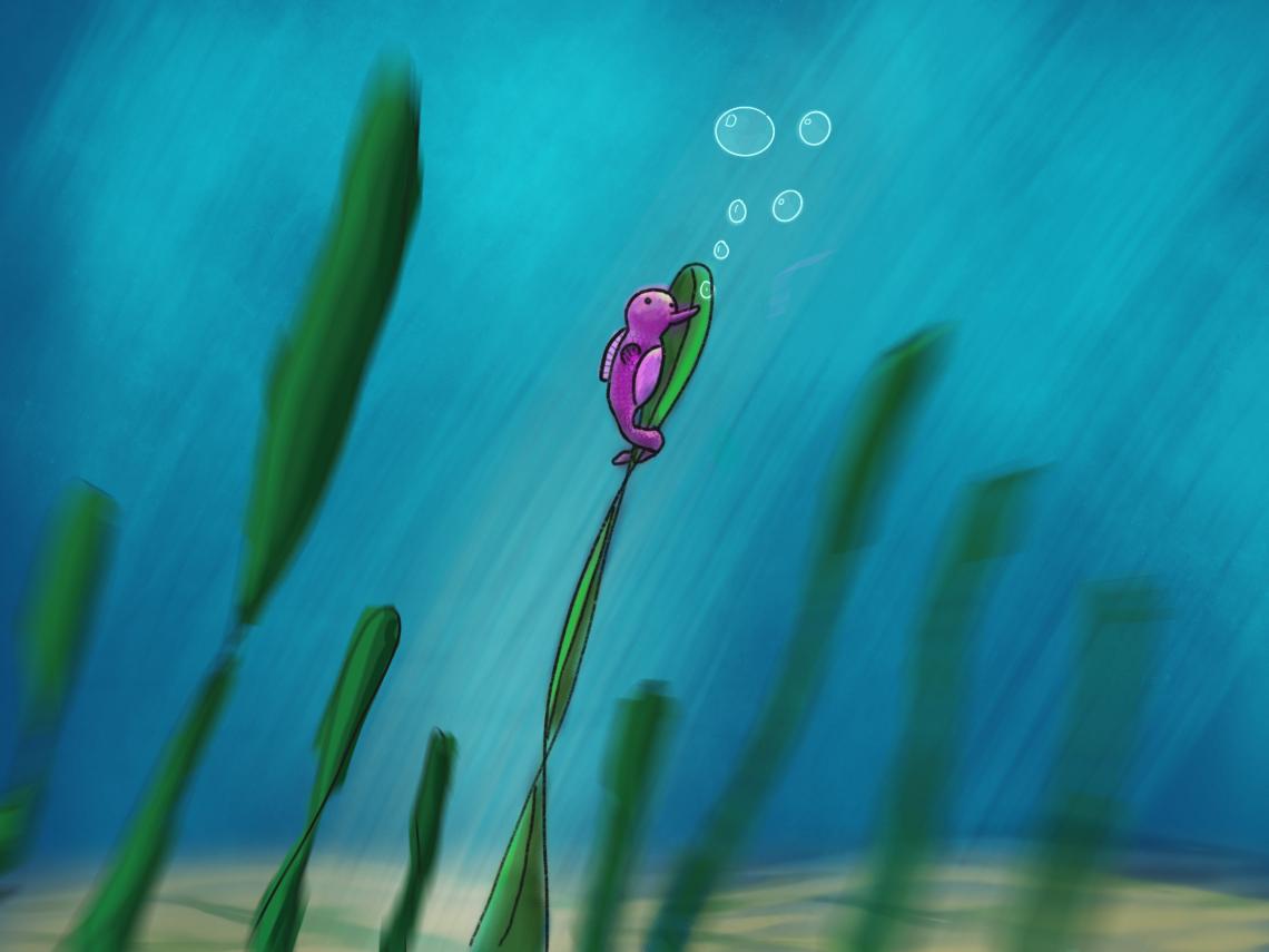 Seahorse blowin'bubbles
